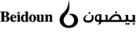 Beidoun